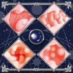 ToysHeart - Astrologer Atelier Onahole